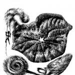 105-ZA-LJUBAV-DOMOVINE